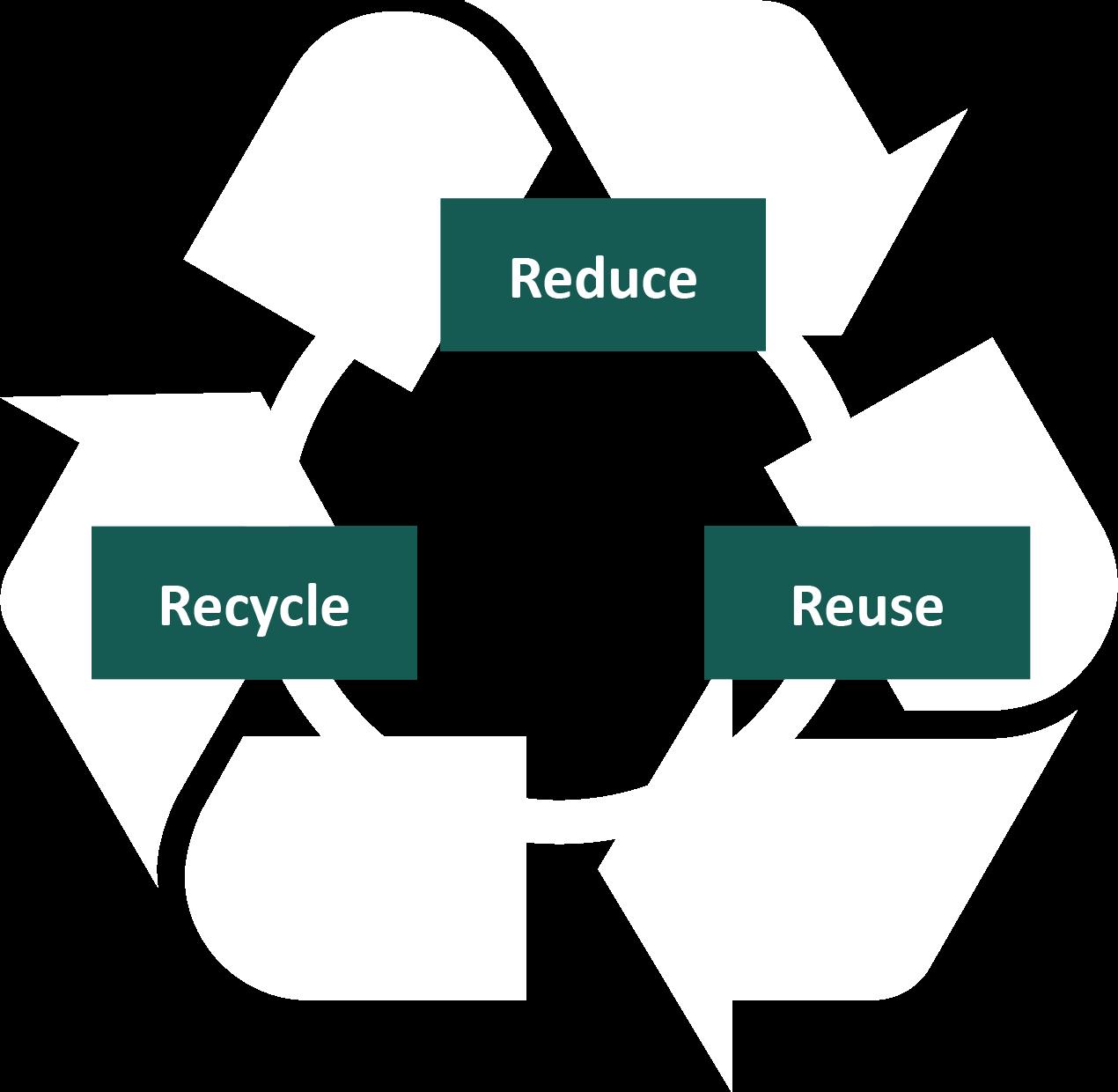 Easysnap Sustainability